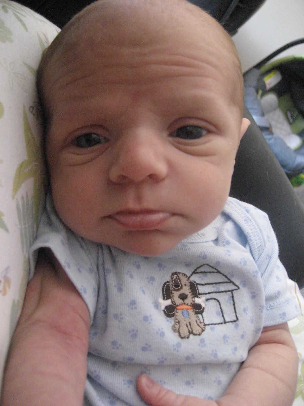 Dünyaya Gelmekten Memnun Kalmayan 15 Şirin Bebek - 1
