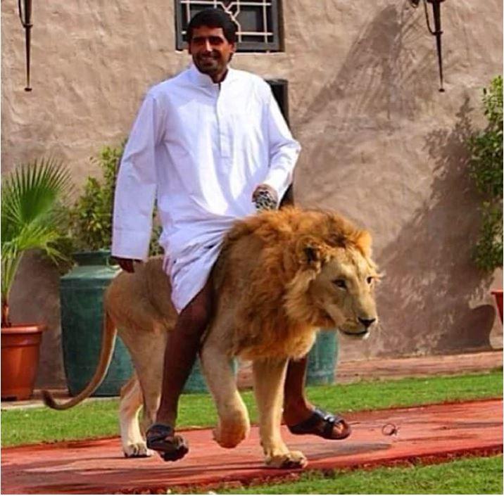 Bunlar Nasıl Kafalar, Dubai'de Yaşıyor Olsaydınız Sürekli Göreceğiniz 16 Manzara - 1