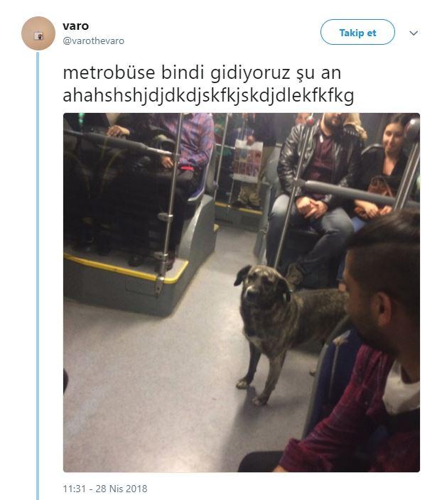 Metrobüs Yolculuklarında Başlarına Gelen Komik Anları Anlatarak Herkesi Koparan15 Mizahşör - 1