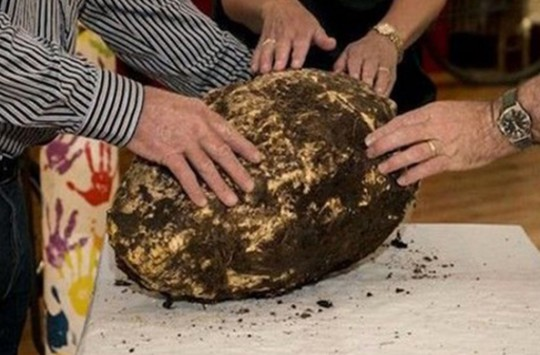 Arkeolojik Kazıdan 3 Bin Yıllık Yiyecek Çıktı