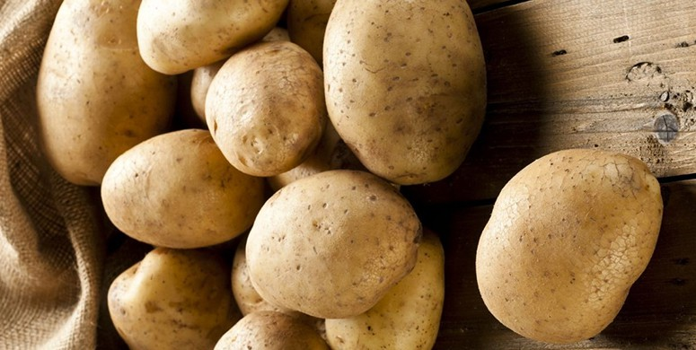 Patatese Aşı Yaptılar! Sonuç İse İnanılmaz